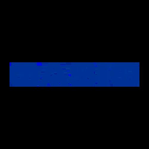Casio phones mobilezguru.com