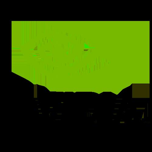 Nvidia phones mobilezguru.com
